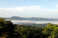 Parque Nacional Soberania