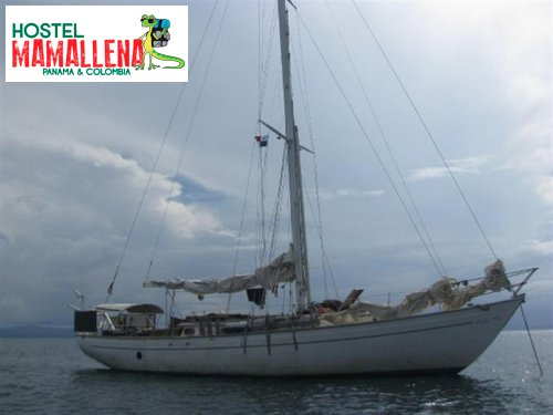 Boat-to-Colombia-delfin-solo-1