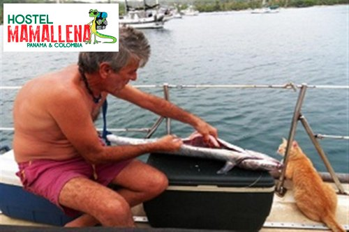 Boat-to-Colombia-delfin-solo-4