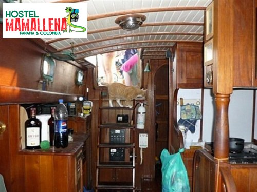 Boat-to-Colombia-delfin-solo-6
